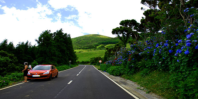 Blumenallee auf Pico