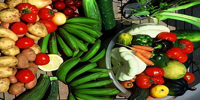 Azoren Früchte und Obst